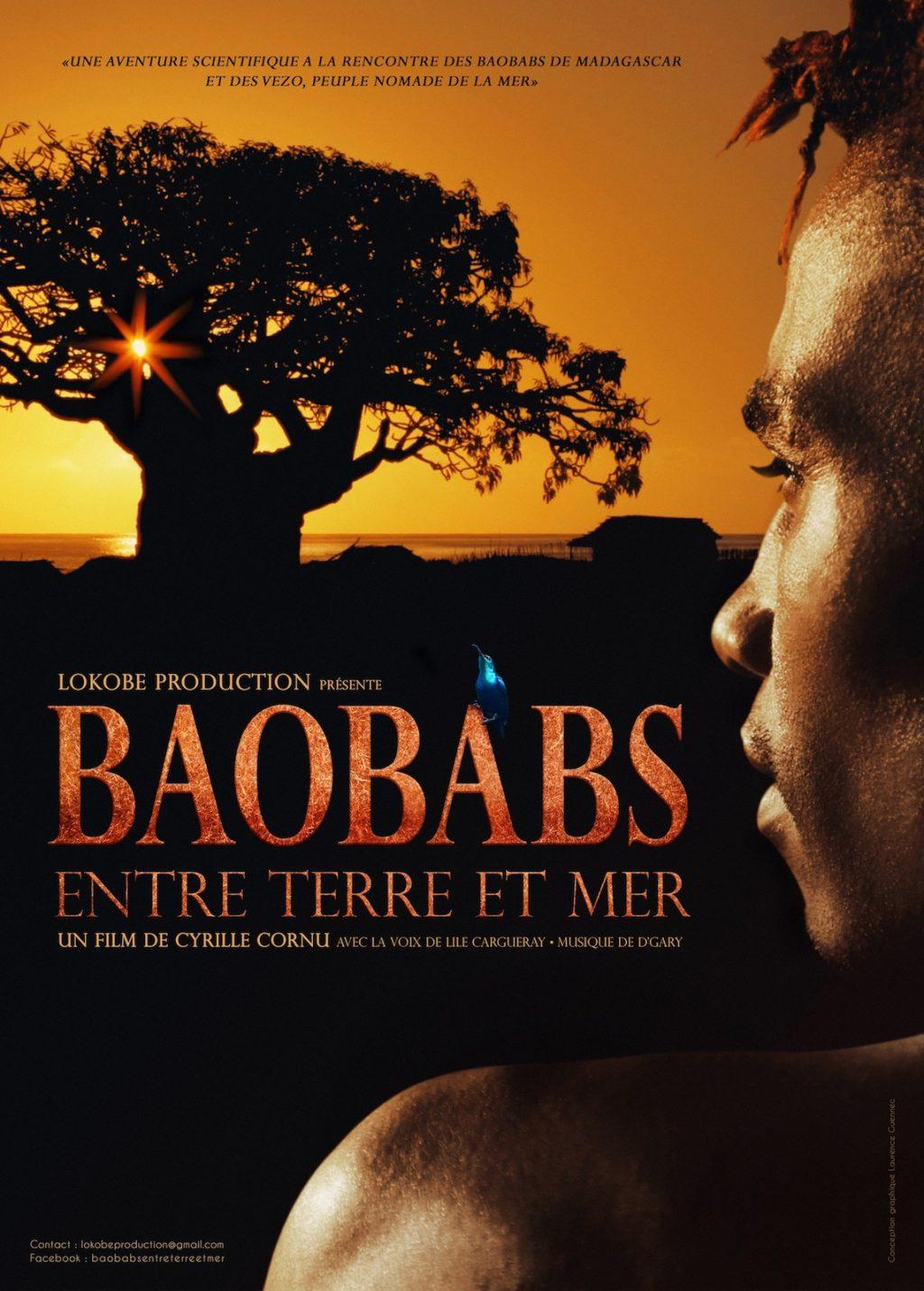 Baobabs entre terre et mer