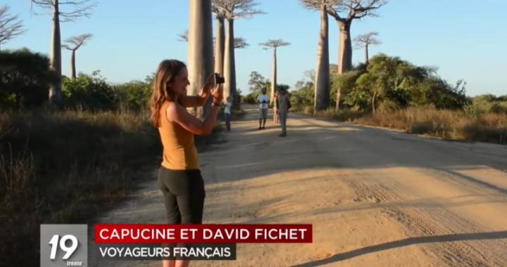 Baobabs de Madagascar Colosses si imposants et si fragiles RTBF 2021